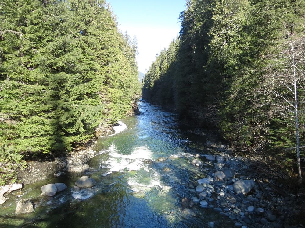 White River, Vancouver Island, Pacific Northwest