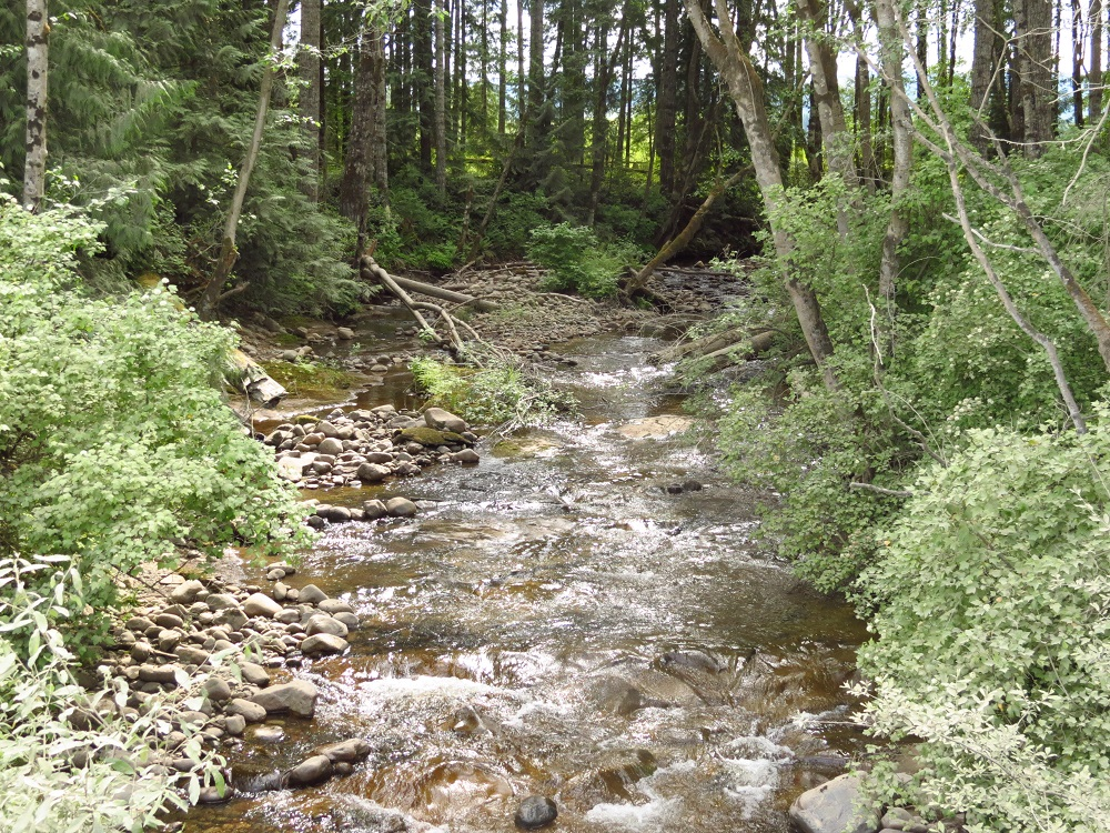 Woodhus Creek