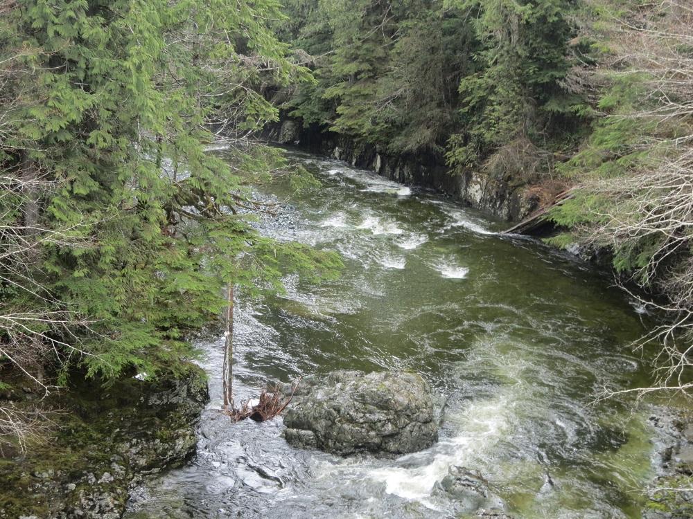 Zeballos River