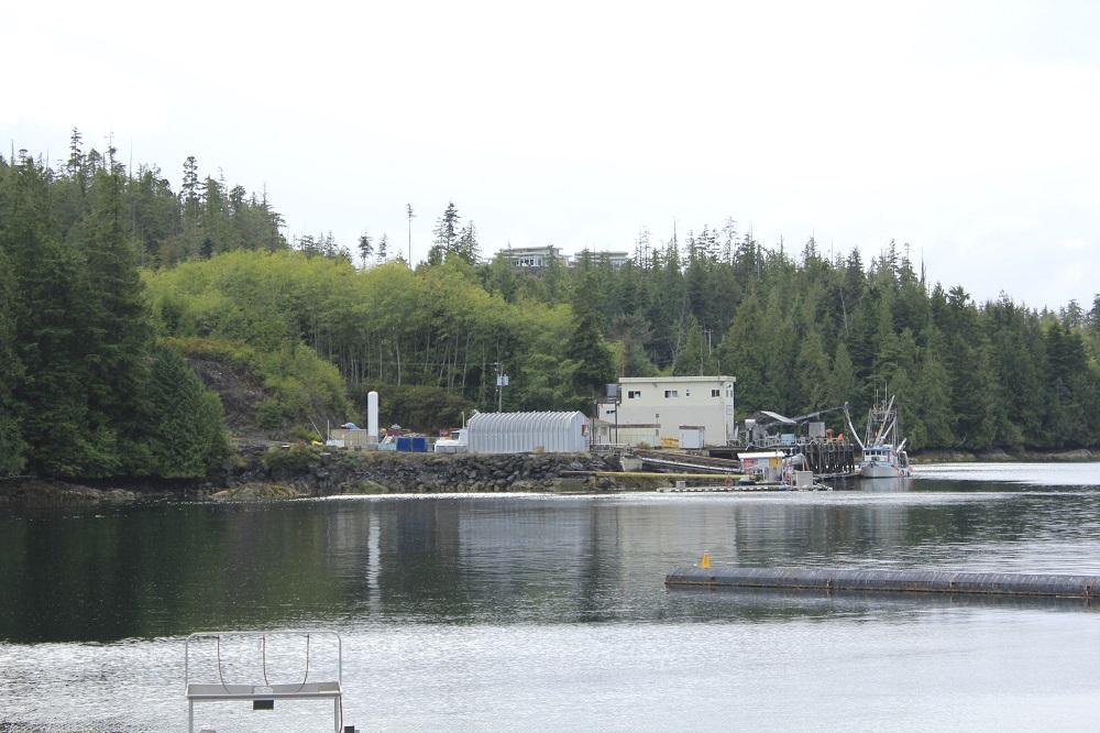 Port Hardy, Vancouver Island Communities, Pacific Northwest