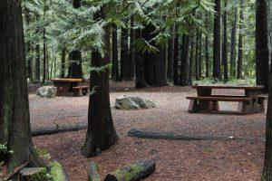 Bamberton Park, Mill Bay Vancouver Island, BC Coastal Region