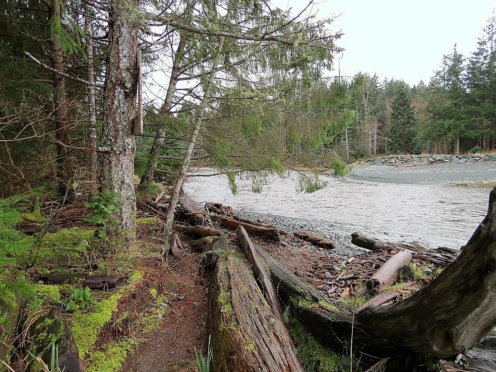 Black Creek, Vancouver island Communities