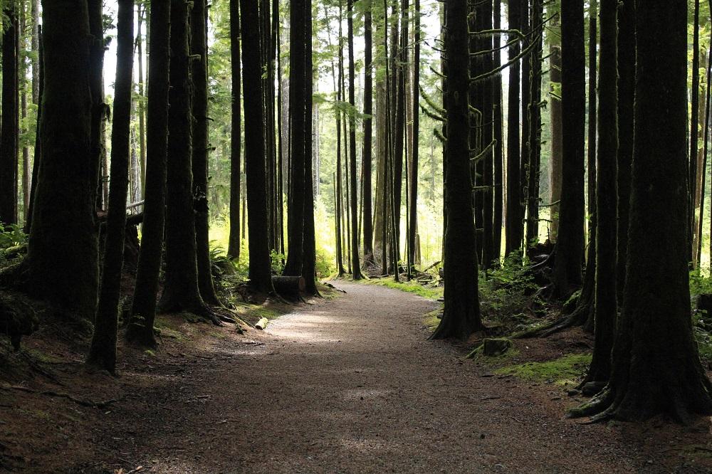 Trails, Pacific Northwest