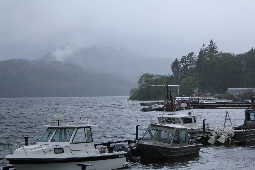 Coal Harbor, Vancouver Island Communities, Pacific Northwest