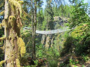 Elk Falls Suspension Bridge, Vancouver Island, BC