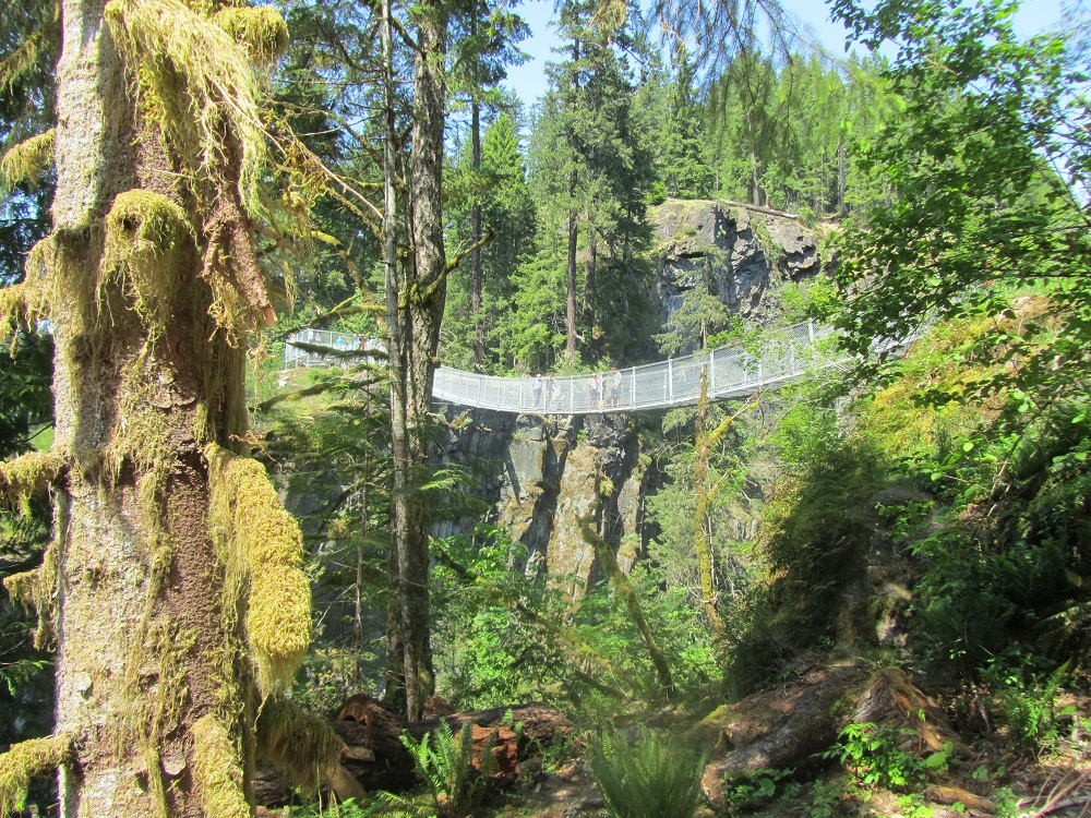 Canyon View Trail, Pacific Northwest Trails