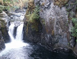 Lower Falls, Englishman River Park, Vancouver Island, BC