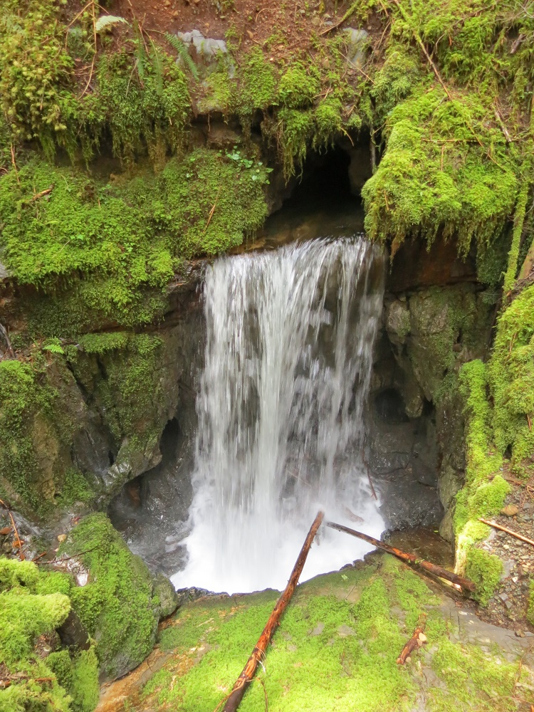 Eternal Fountain Waterfall, Vancouver Island, BC
