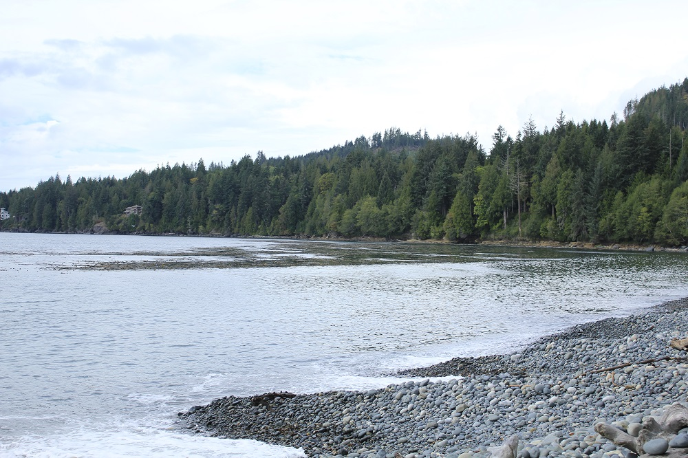 French Beach Park, Pacific Northwest Parks