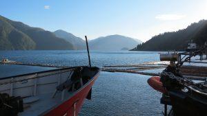 Muchalat Inlet, Vancouver Island, BC Coastal Region, Gold River Village