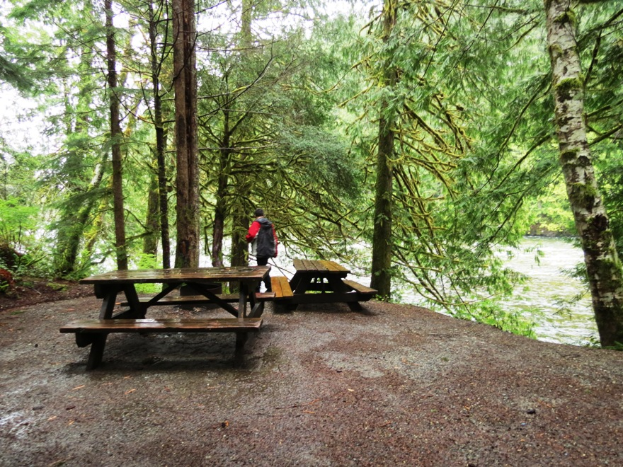 Gold River Park, Vancouver Island, BC