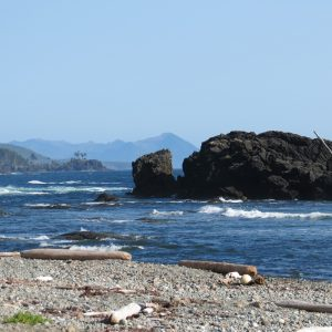 West Coast Shore Vancouver Island, BC Coastal Region