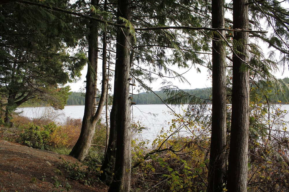 Morton Lake Park, Vancouver Island, BC