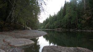 Peppercorn Trail, Gold River Village, Vancouver Island, BC Coastal Region.