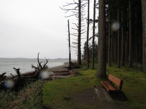 Rathtrevor Park, Parksville, Vancouver Island, BC Coastal Region