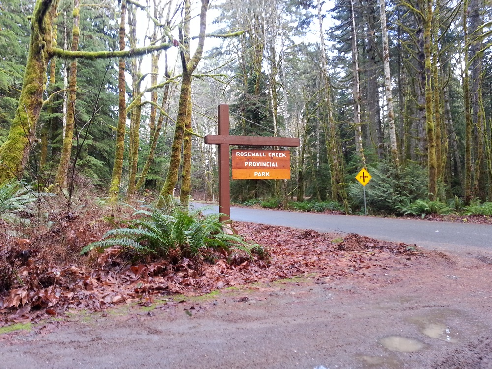 Rosewall Creek Park, Bowser, Vancouver Island Communities, Pacific Northwest