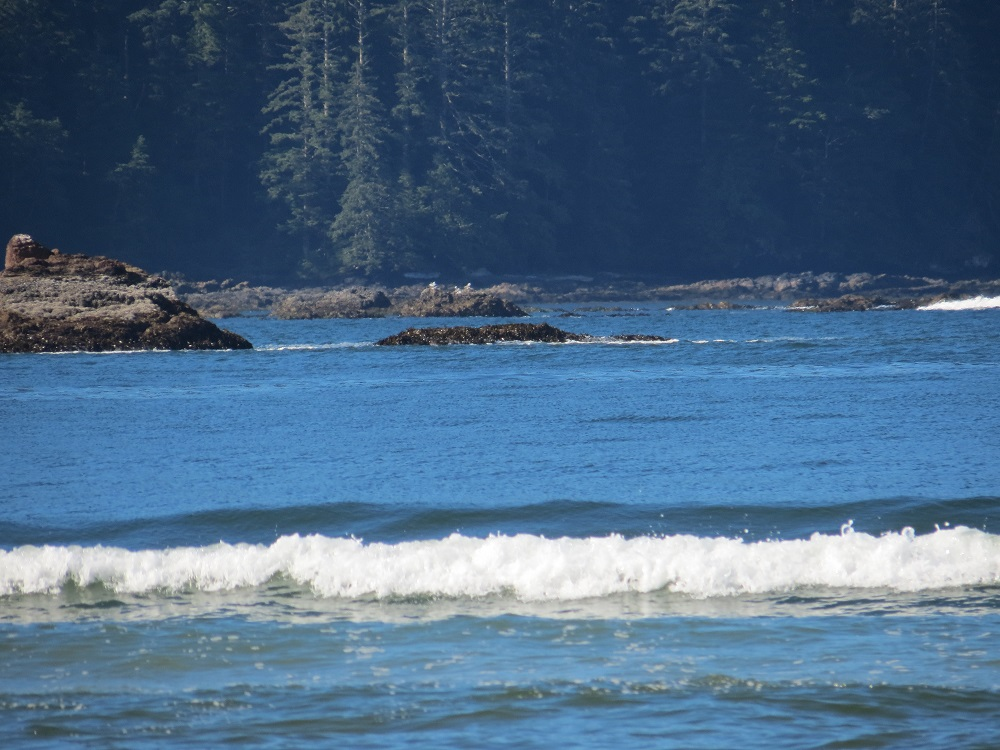 Cape Scott Park, Vancouver Island, BC, Coastal Region