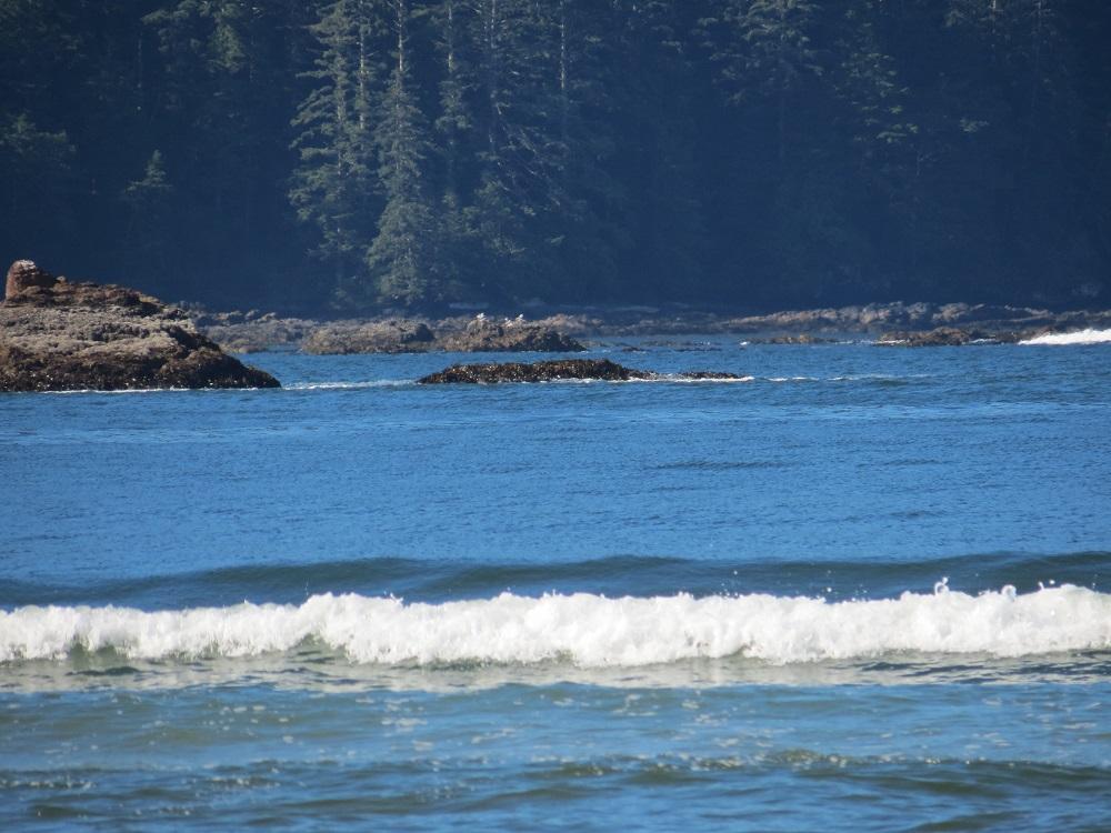 Cape Scott Park, Pacific Northwest Parks