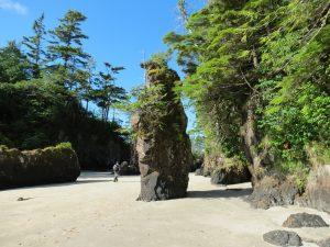 San Josef Bay Park, Vancouver Island, BC, Coastal Region, Parks