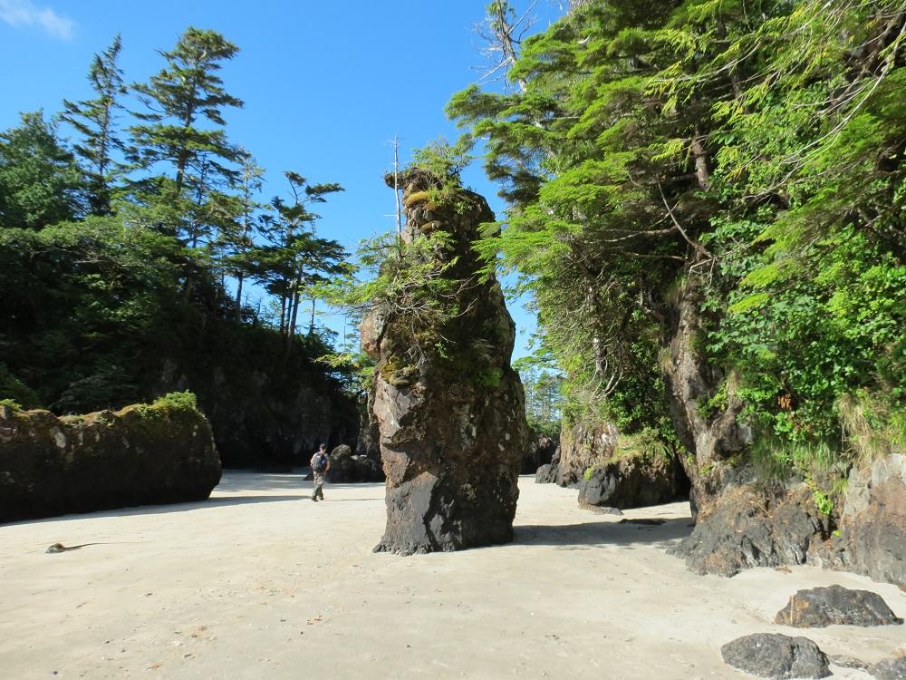 San Josef Bay Park, Pacific Northwest Parks