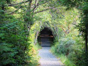 San Josef Bay Trail, Vancouver Island, BC Coastal Region