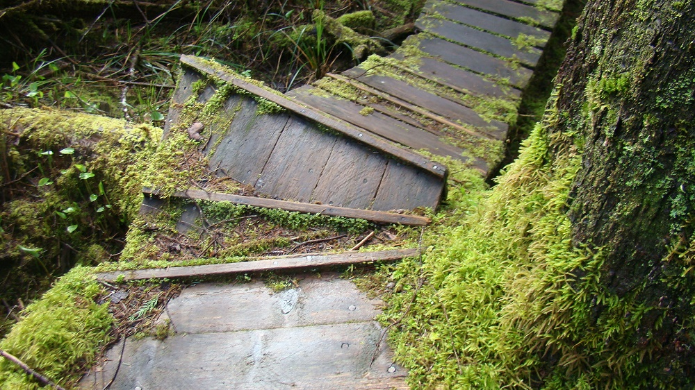 Zeballos Estuary, Vancouver Island Communities, Pacific Northwest