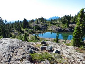 Crest Mountain Trail, Vancouver Island, BC