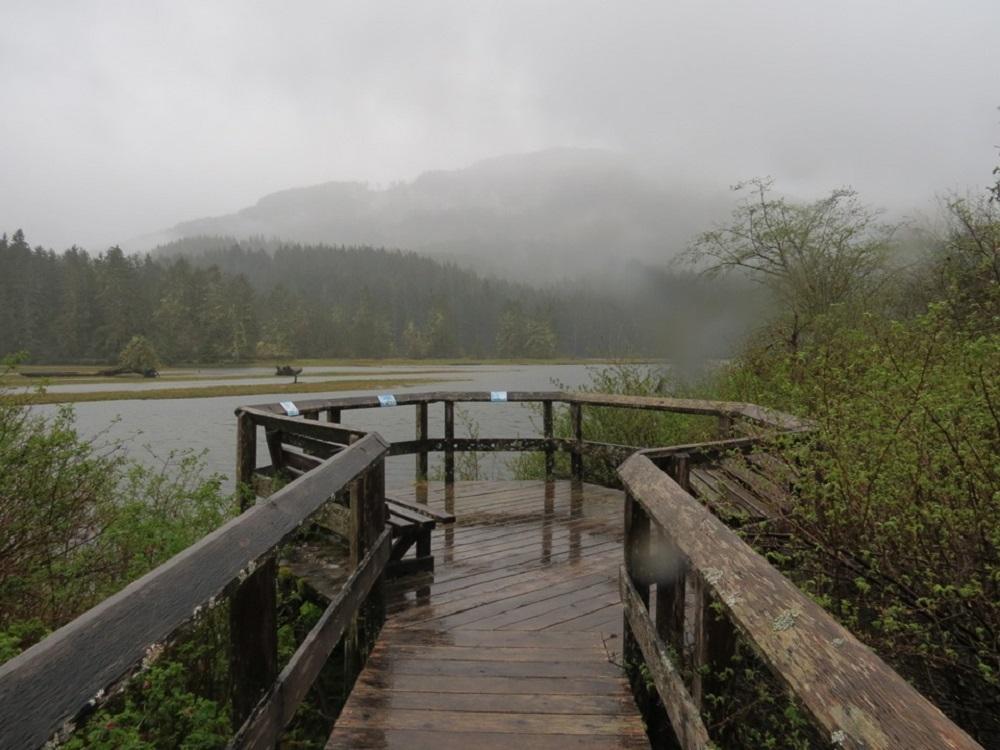 Liener River estuary trail, Vancouver Island, BC