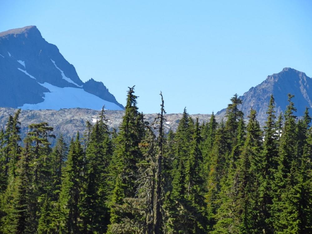 Forbidden Plateau Trail, Pacific Northwest Trails