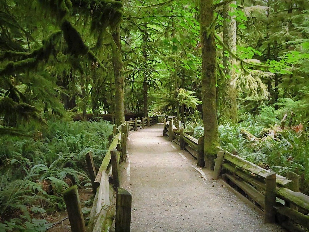 Cathedral Grove Park