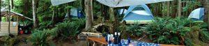 North Island Kayak camps