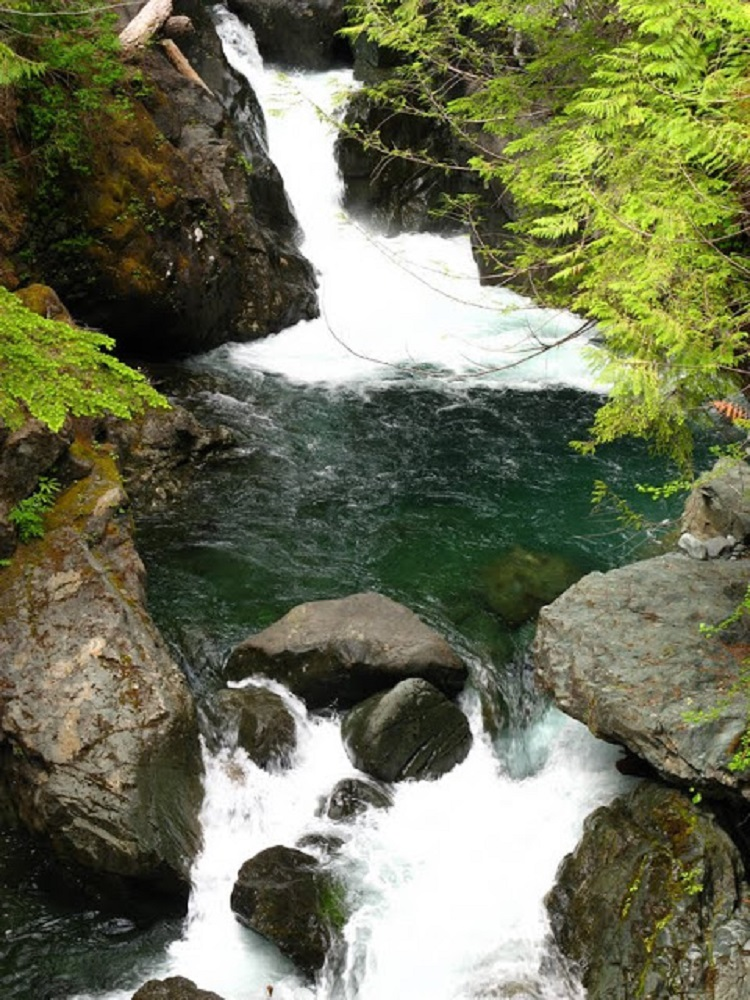Nawmint River, Vancouver Island, Pacific Northwest