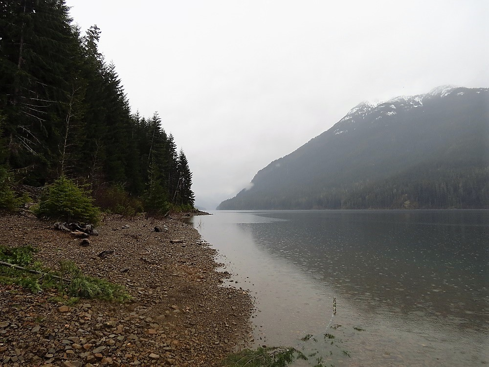 Buttle Lake, Auger Point, Parks, Pacific Northwest