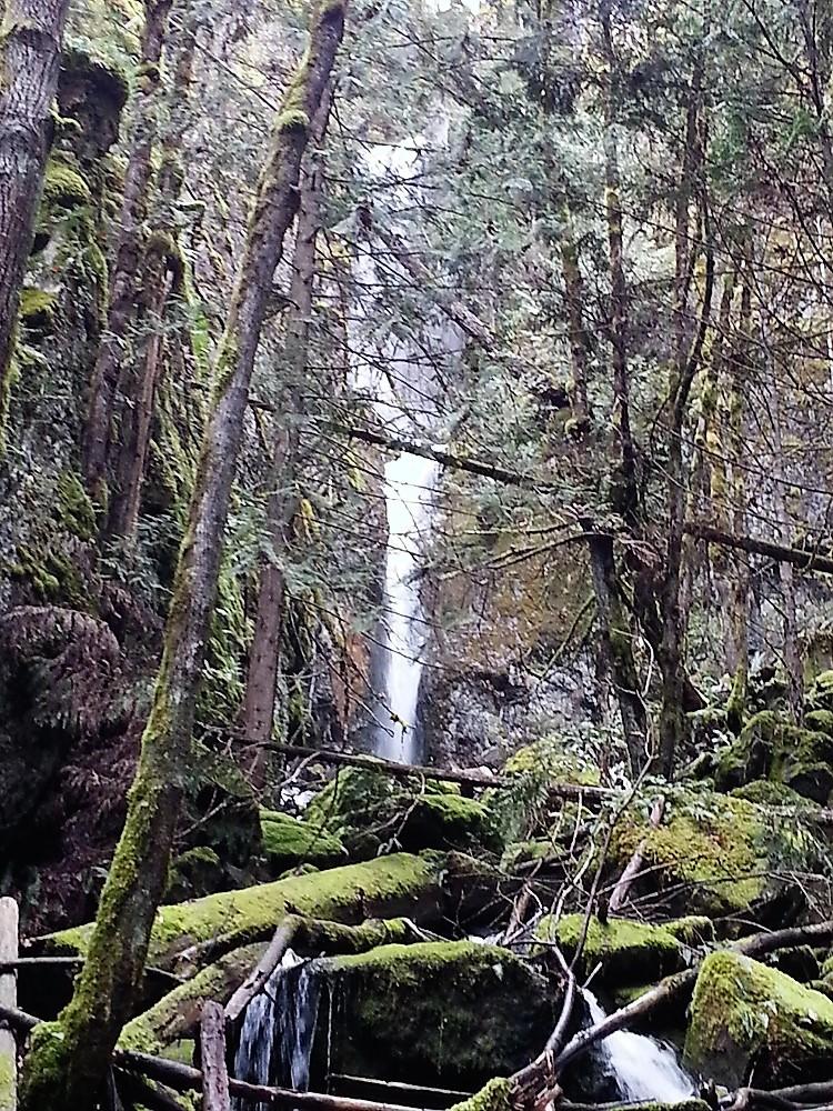 Waterfalls, Comox Lake, Vancouver Island, Pacific Northwest