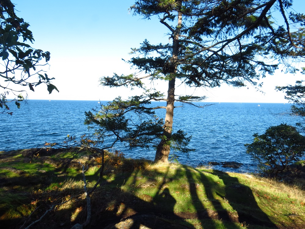 Neck Point Park, Parks, Nanaimo, Pacific Northwest