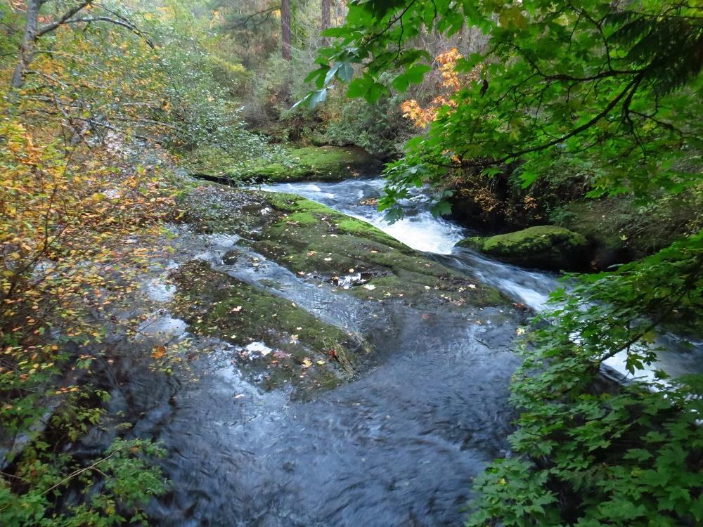 Bowen Park, Parks, Vancouver Island, Pacific Northwest