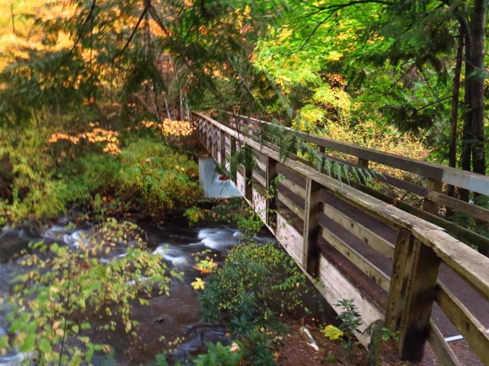 Bowen Park, Parks, Pacific Northwest