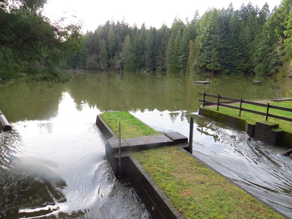 Collier Dam Park, Parks, Pacific Northwest