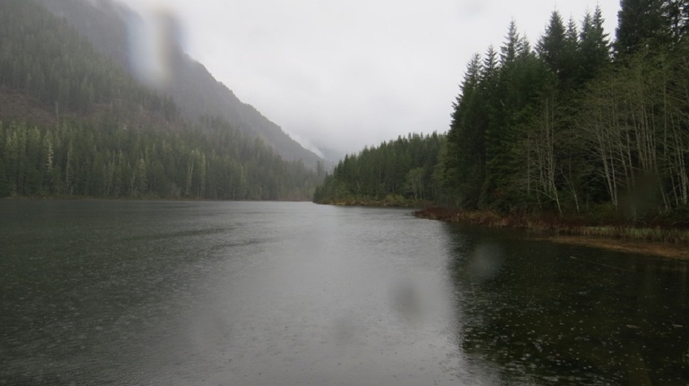 Antler Lake Rec Site, Parks, Vancouver Island, Pacific Northwest