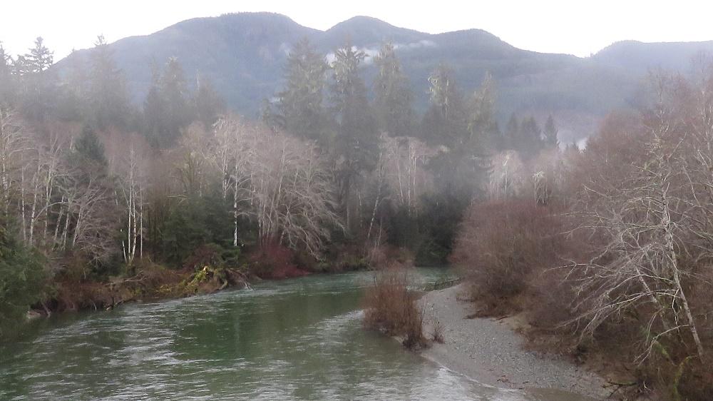 Nitinat Park, Pacific Northwest