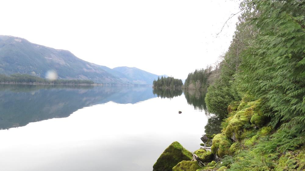 Nixon Creek Campground, Parks, Pacific Northwest