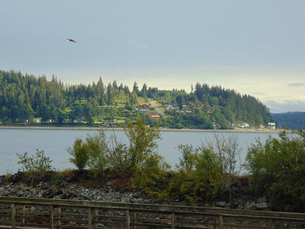 Cormorant Island, Photo By Bud Logan