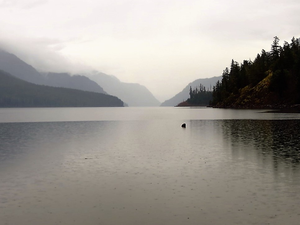 Buttle Lake, photo by Bud Logan