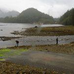 Nesook Bay, Vancouver Island, BC