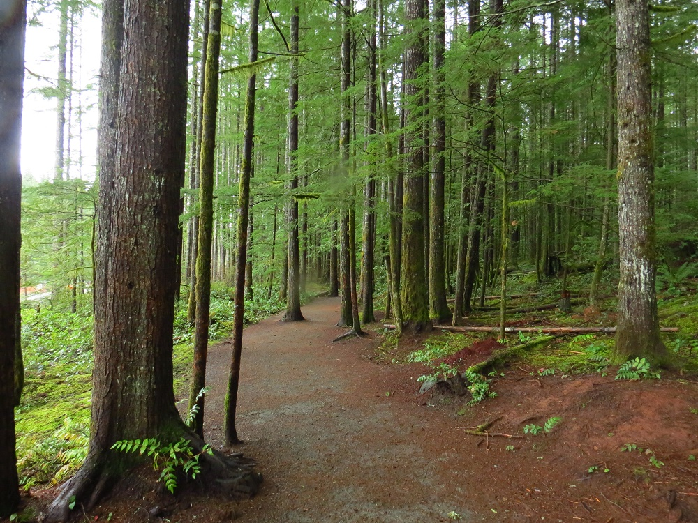Oyster River Nature Park, Vancouver Island, BC