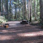 Elk Creek Campsite, Sayward, Vancouver Island, BC