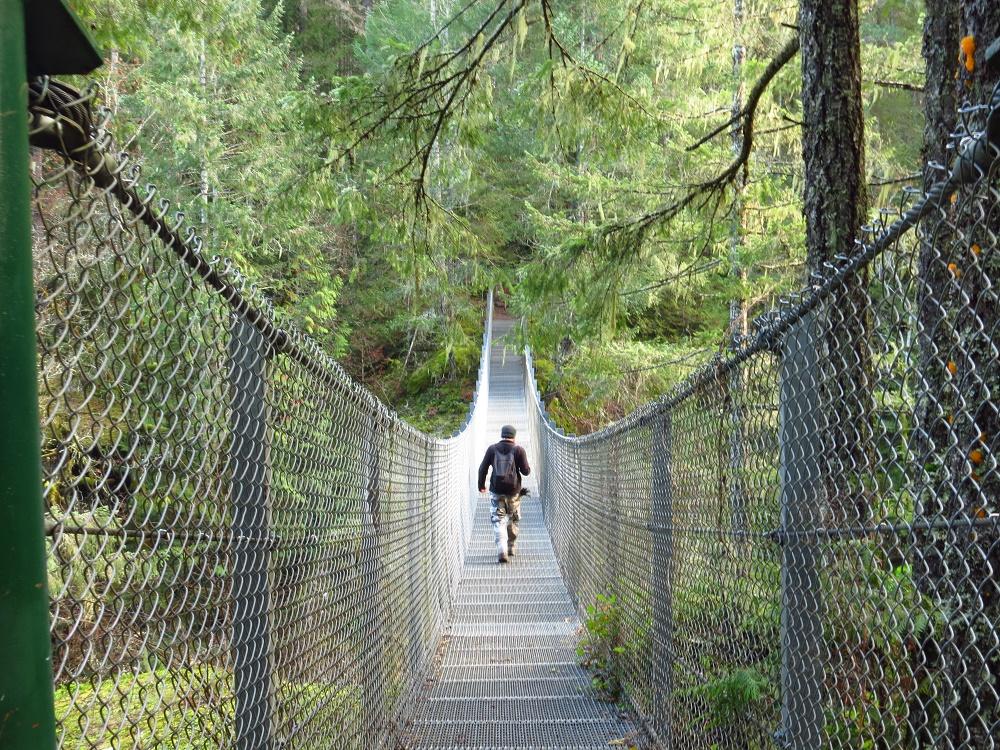 Haslam Creek Suspension Bridge, Vancouver Island, BC