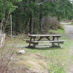 Nimpkish Lake Campsite, Vancouver Island, BC