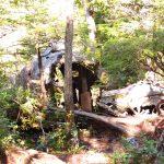 Dakota 576 Crash Site Trail, Vancouver Island, BC