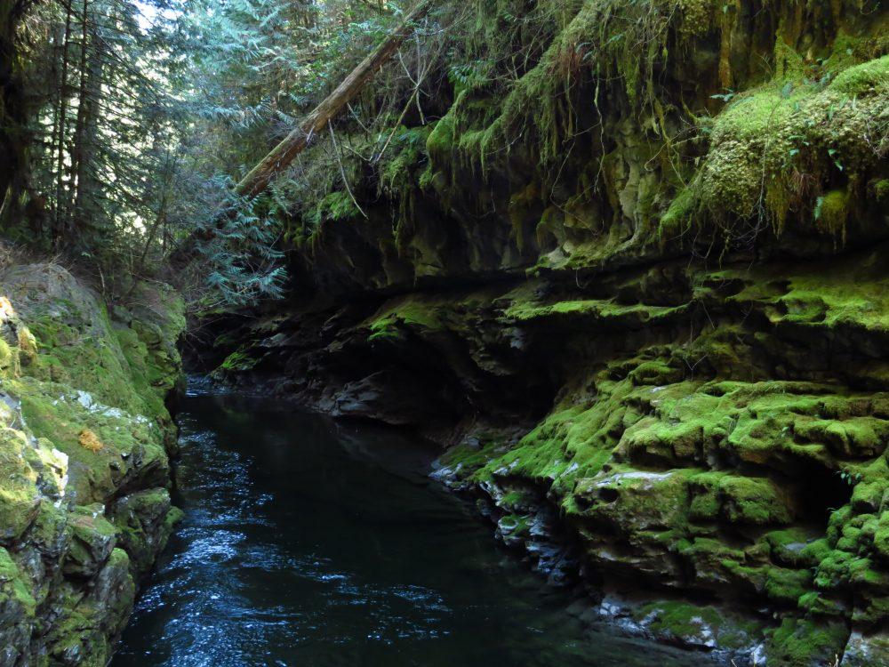Canyon Caving, Vancouver Island, BC